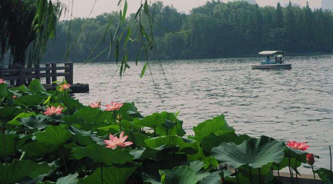 为何非要为大明湖找一个夏雨荷的故事