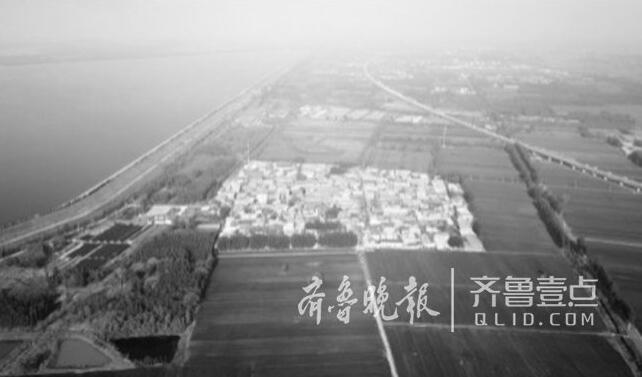 """""""袁米""""也要来到济南了 海水稻加入后黄河大米能否重振?"""
