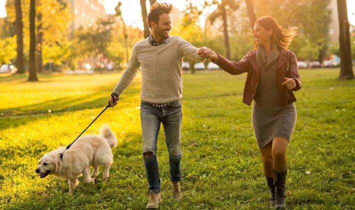 """规范养犬的重点不该是白天""""禁遛"""""""