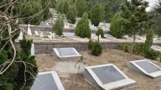 5A景区违建坟墓需依法彻底整治
